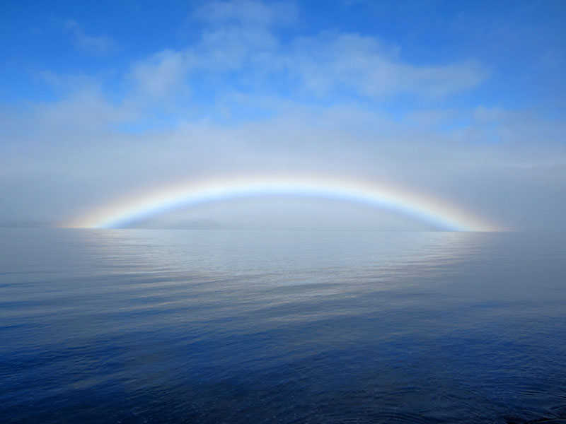 Bay of Fundy Fogbow