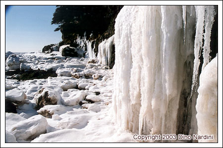 Coastal Ice, Cape Split
