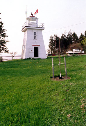 Walton Light
